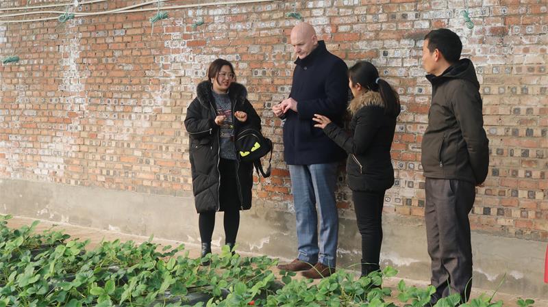 英国贝尔法斯特女王大学教授Christopher Elliott教授参观考察南和农业嘉年华(图11)